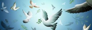 السلام في الإسلام